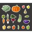 Vintage garden banner with root veggies vector image