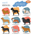 working watching dog breeds set icon isolated on vector image