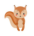 adorable squirrel in modern flat style vector image vector image