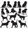 beagle silhouettes vector image