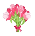 beautiful bouquet of pink tulips vector image