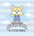 cat playing skate board road cloud vector image vector image