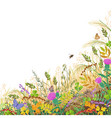 colorful border with autumn meadow plants and vector image vector image