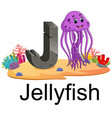 cute zoo animal alphabet j for jelly fish vector image vector image