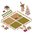 isometric a harvest vector image vector image