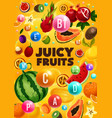 ripe juicy fruits with vitamin pills vector image