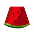 sweet fruit watermelon vector image vector image