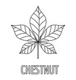 chestnut leaf icon outline style vector image vector image