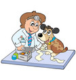 dog with sick paw at veterinarian vector image