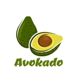 Green avokado fruit sketch vector image vector image