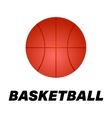 Realistic basketball icon Logo vector image