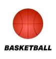 Realistic basketball icon Logo vector image vector image