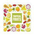 tropical fruits banner template with fresh sweet vector image vector image