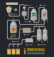 beer infographic or brewery line factory process vector image