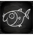 Fish Drawing on Chalk Board vector image