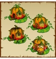 Pumpkin houses where there live gnomes pumpkin vector image vector image