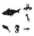sea and animal symbol set vector image