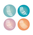 set of round wings collections vector image