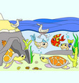 wetland landscape with animals color for vector image vector image