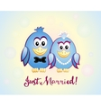 Just Married blue birds vector image