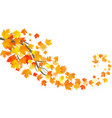 autumn template with maple autumn leaves eps 10 vector image vector image