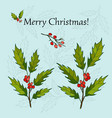 holly christmas background vector image vector image