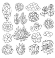 Isolated black outlines of succulents vector image vector image