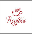 rooibos fresh tea with cup vector image vector image