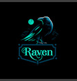 a raven is standing vector image