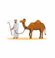 Arabian man walk with camel in dessert