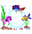 Fish advertisement vector image vector image