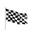 flag auto racing waving realistic banner vector image vector image
