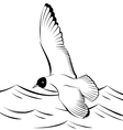 Seagull flying over the sea vector image vector image