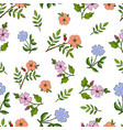 seamless pattern with hand drawn medicinal plants vector image