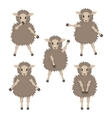 sheep in various poses vector image