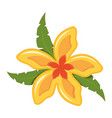 flower with petals yellow and orange vector image