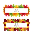 Banner advertising and autumn colored leaves vector image