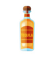 flat bottle icon web design icon vector image