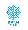 geometrical abstract snowflake logo vector image vector image