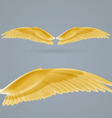 Inspire wings vector image vector image
