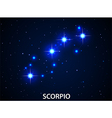 Set of Symbol Zodiac Scorpio vector image