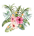 tropical flowers composition white background vector image vector image