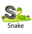 zoo animal alphabet s for snake vector image