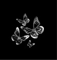 Silver colored butterflies flying on black vector image