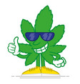 cartoon marijuana vector image vector image