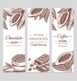 cocoa and chocolate banners sketch cacao and vector image vector image