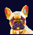 french bulldog pop art vector image vector image