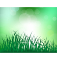 Grass Meadow background vector image vector image
