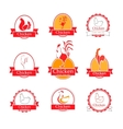 Logo design template chicken vector image vector image