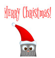 owl in the santa claus hat postcard for the new vector image vector image